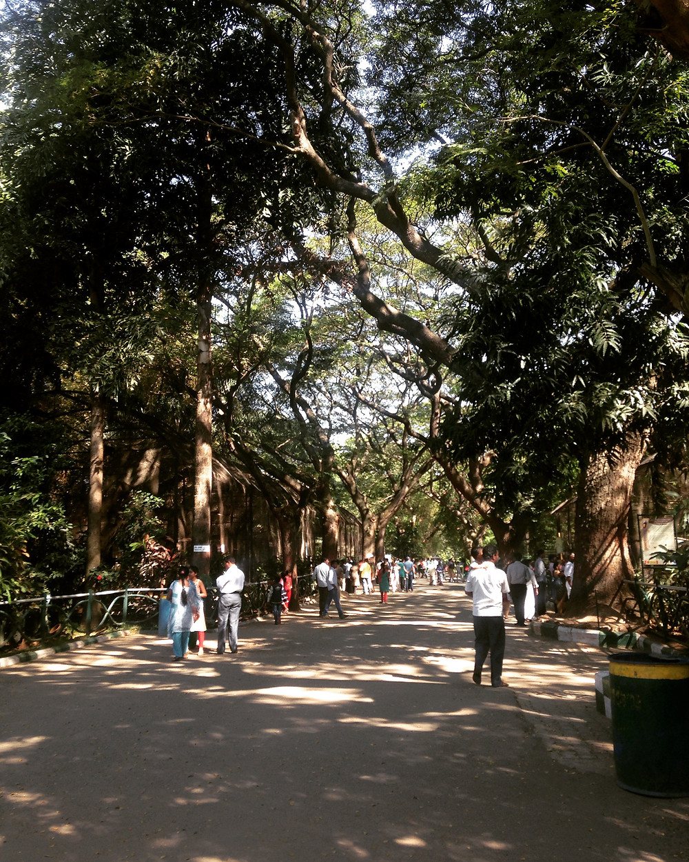 Mysore India Zoo Blog Travel Blogger Creative Living Beauty Picture Art