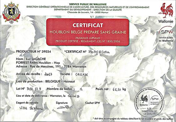 Belgische hop ⎢Abbaye des Rocs