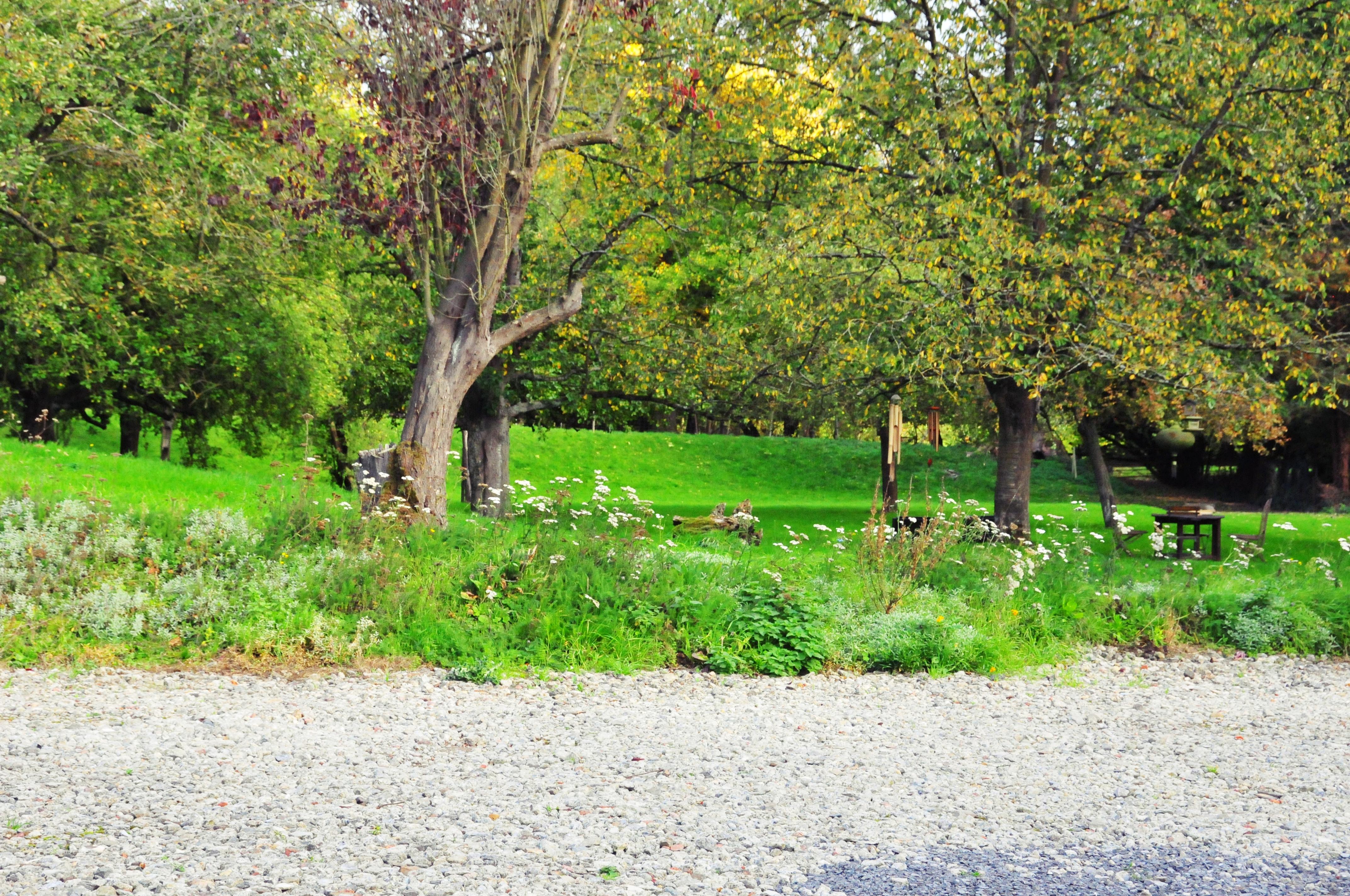Un jardin au Moulin