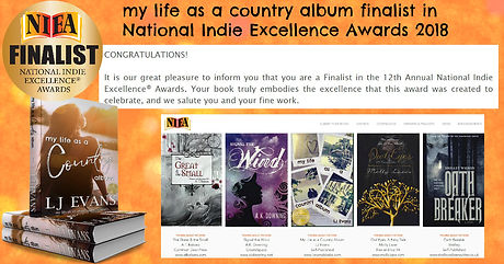 My Life as a Country Album Finalist in NIEA Awards