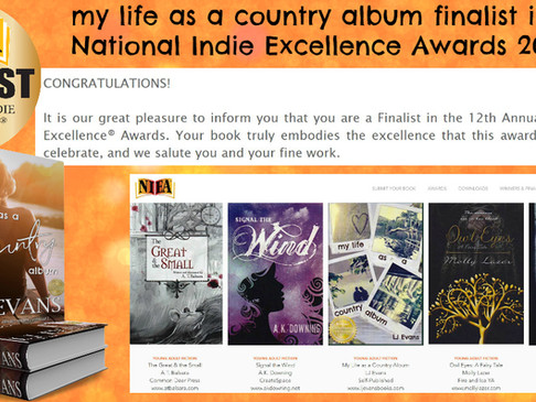 NIEA Awards & Giveaway