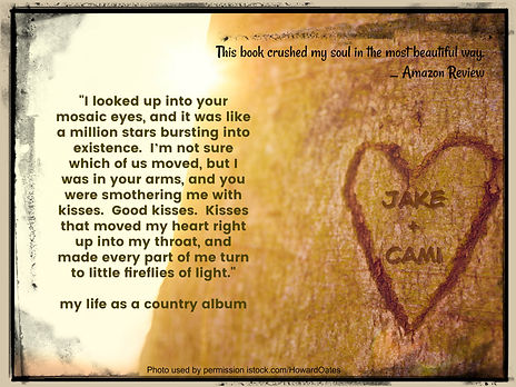 my life as a country album teaser