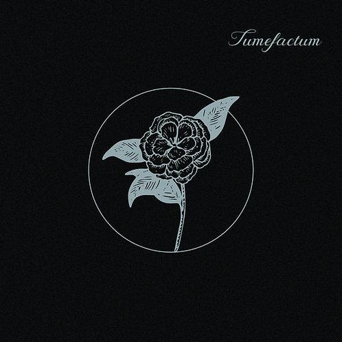 TUMEFACTUM: st (LP)