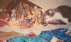 Old cat watching over nativity scene