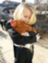 Pet chicken and little girl