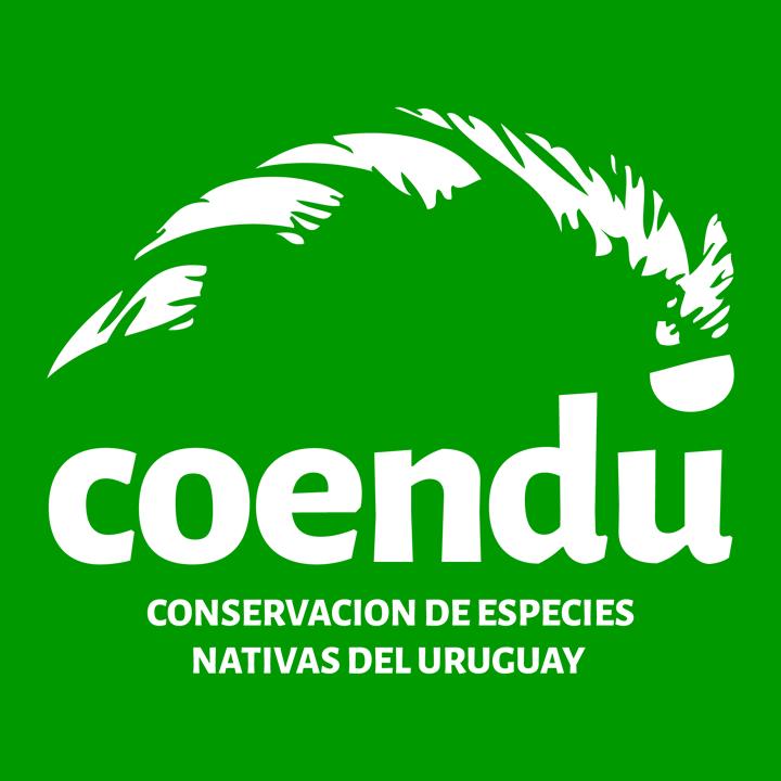 Nos visita Coendú