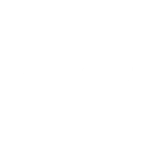 GuideWhite.png