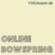 Online Bowspring.png