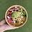 Thumbnail: Buddha POULET + Boisson + Dessert
