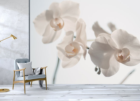 White Floral Mural