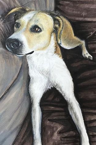 Beautiful Large ProMarker pen portrait of a dog looking cute!