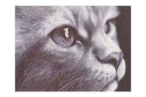 LTD EDITION ART PRINT BALLPOINT PEN CAT