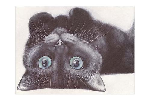 LTD EDITION ART PRINT BALLPOINT PEN BLACK CAT