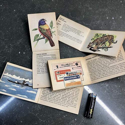 SET OF 4 BANCROFT TIDDLERS BOOKS