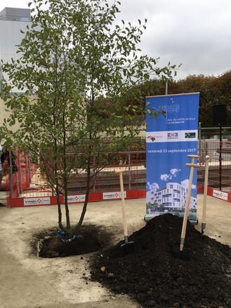 La Courneuve : nous avons planté le premier arbre !