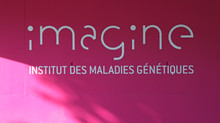 Imagine... L'architecture avec le virus