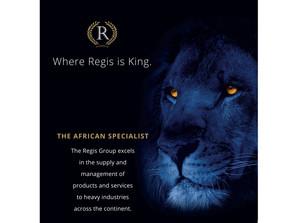 Regis Holdings copy line image