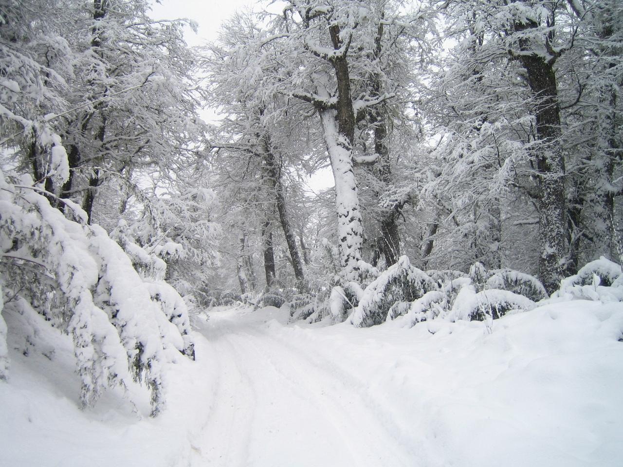 L'hiver a TAO