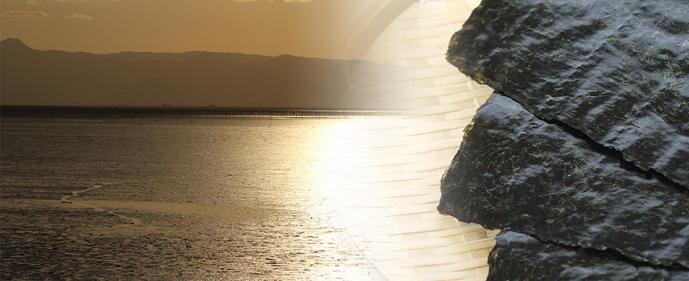 海苔イメージ980×400.jpg