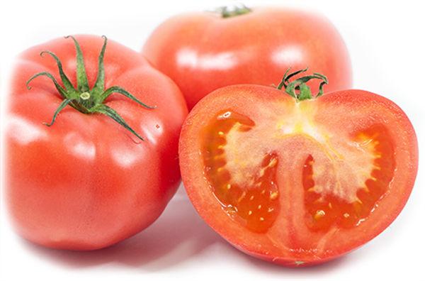 トマト群500.jpg