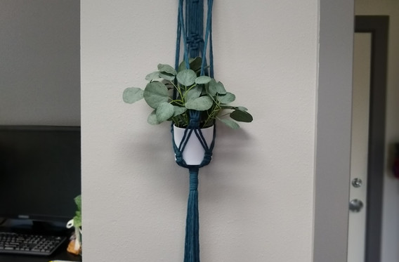 blue plant hanger with driftwood
