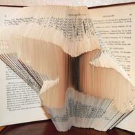 Folded Book - Blackbird