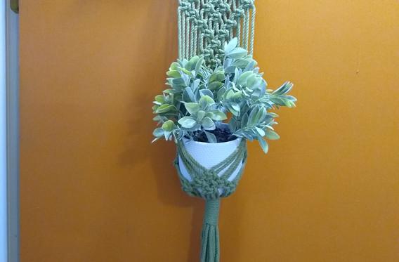 green diamonds plant hanger