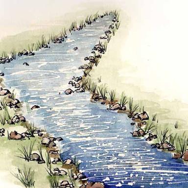 Mt. Pisgah Stream