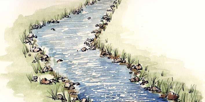 mt pisgah creek
