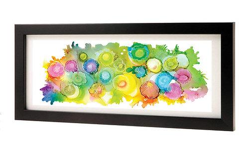 Rainbow Jellies Framed Print