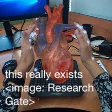 31 Haptic Hologram Research Gate.jpg