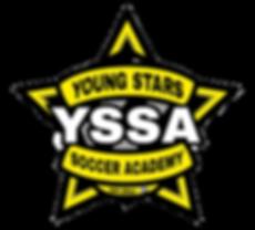 YSSA_edited.png