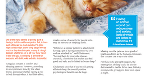 Co-Sleep with your pet? READ all about it!