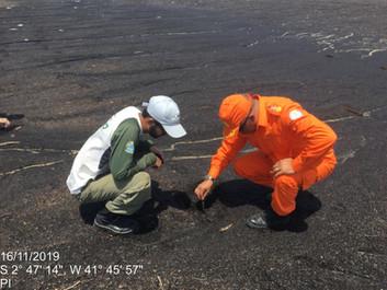 Monitoramento e limpeza das praia no litoral piauiense