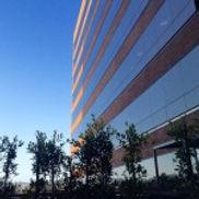 Wright Institute Los Angeles