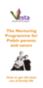 The Nurturing Programme - information le