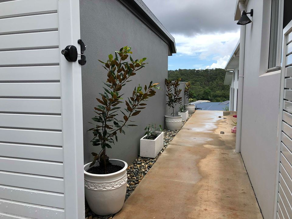 Pots and planting