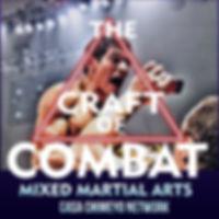 CRAFT OF COMBAT 2.jpg