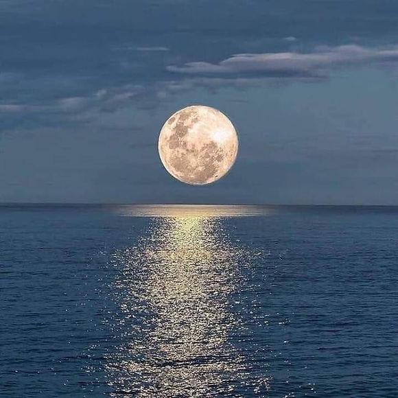 Moon%20_edited.jpg