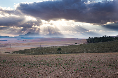 Beautiful light rays in the Overberg