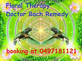 Dr bach flower remedy