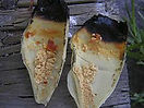 220px-Typical_ear_candling_contents.jpg
