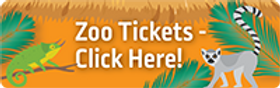 Zoo_tickets.png