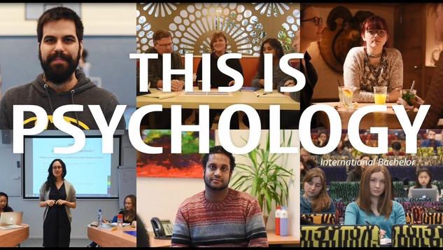 BA Psychology Leiden University