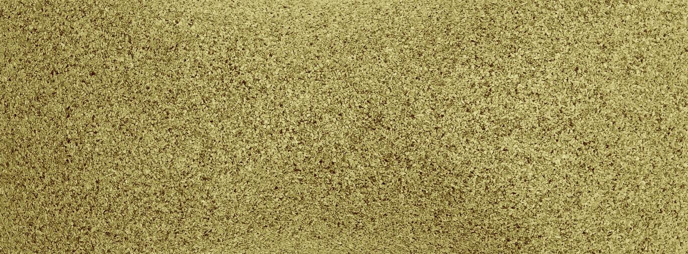 Olive : Pantone 5845C