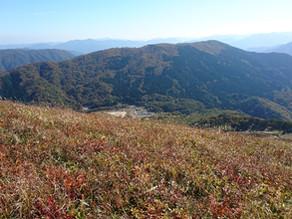 紅葉からのハイキングからの登山