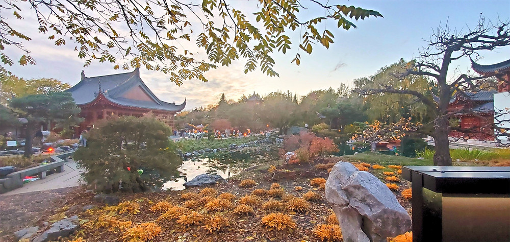 Botanical garden Japanese