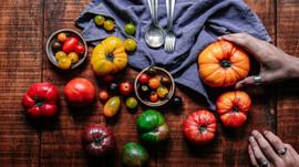 La tomate : la star de nos assiettes estivales !