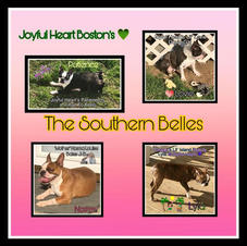 The Southern Belles