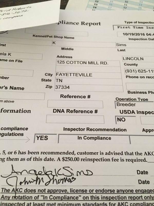 akc compliance.jpg